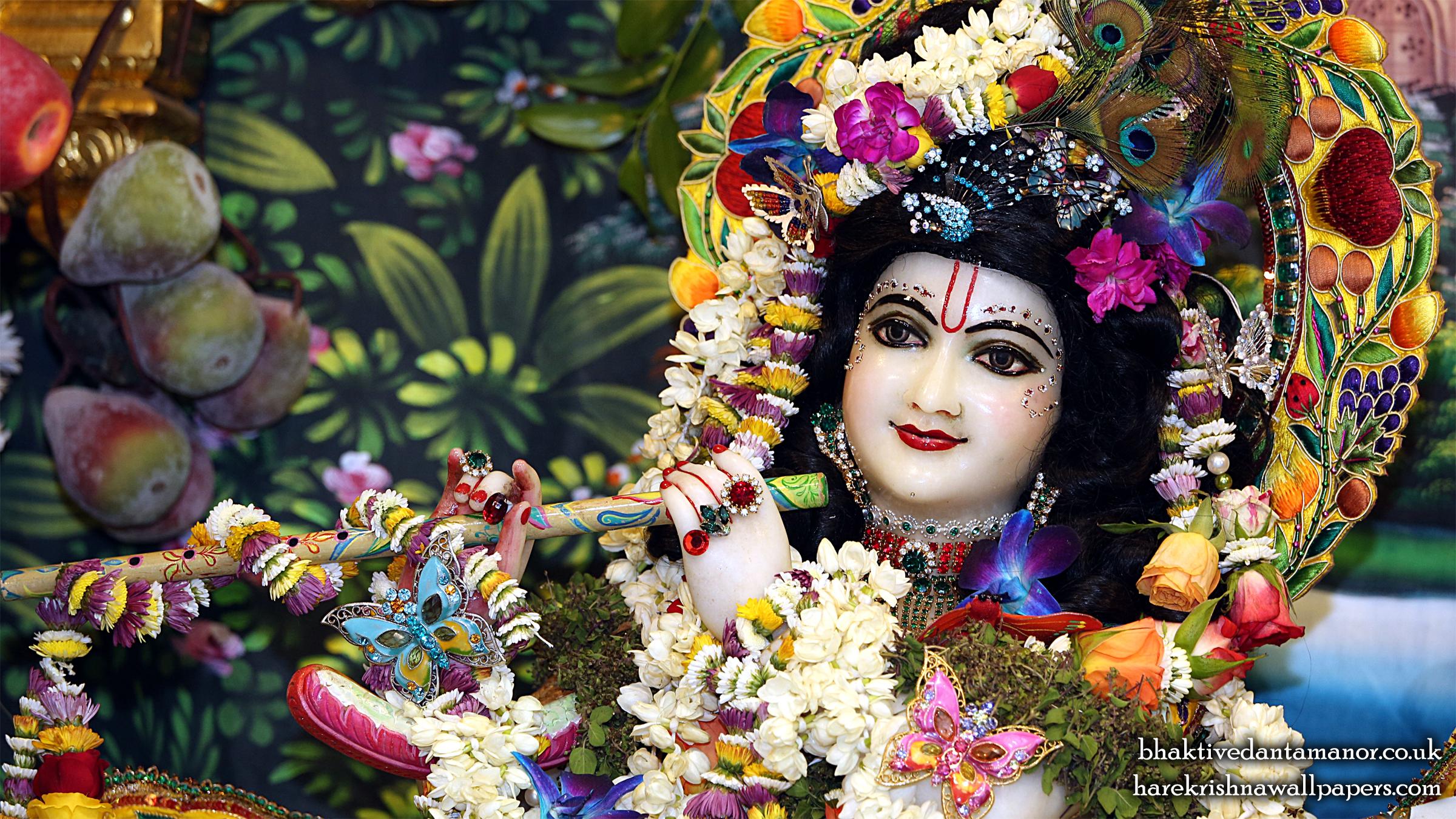 Sri Gokulananda Close up Wallpaper (019) Size 2400x1350 Download