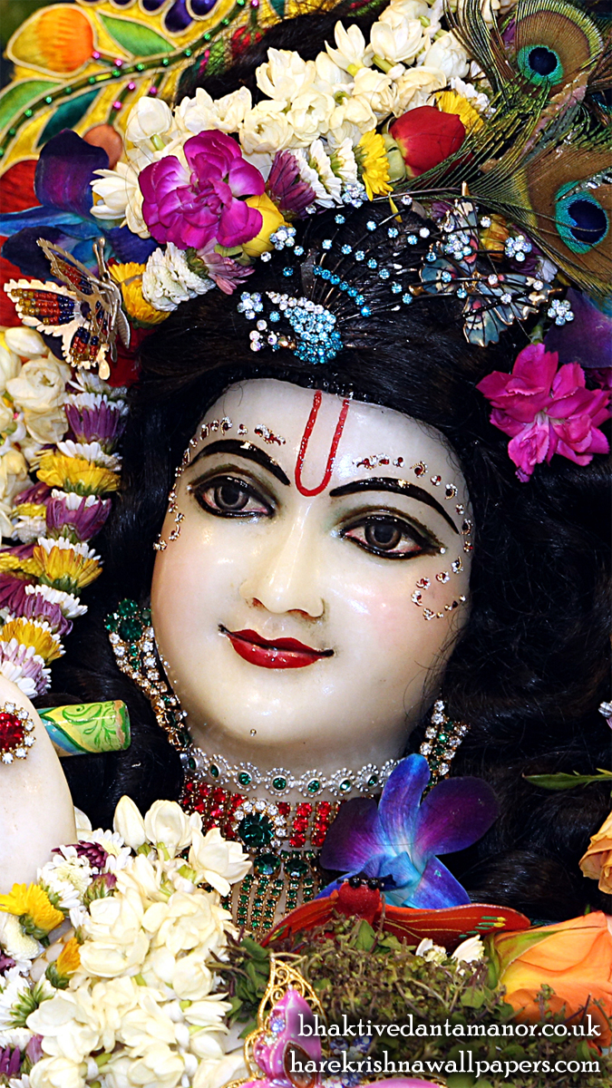 Sri Gokulananda Close up Wallpaper (019) Size 675x1200 Download