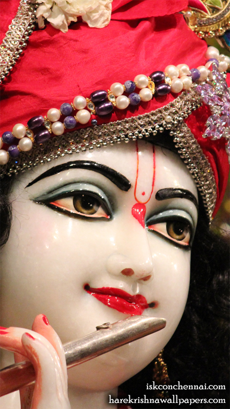 Sri Krishna Close up Wallpaper (001) Size 450x800 Download