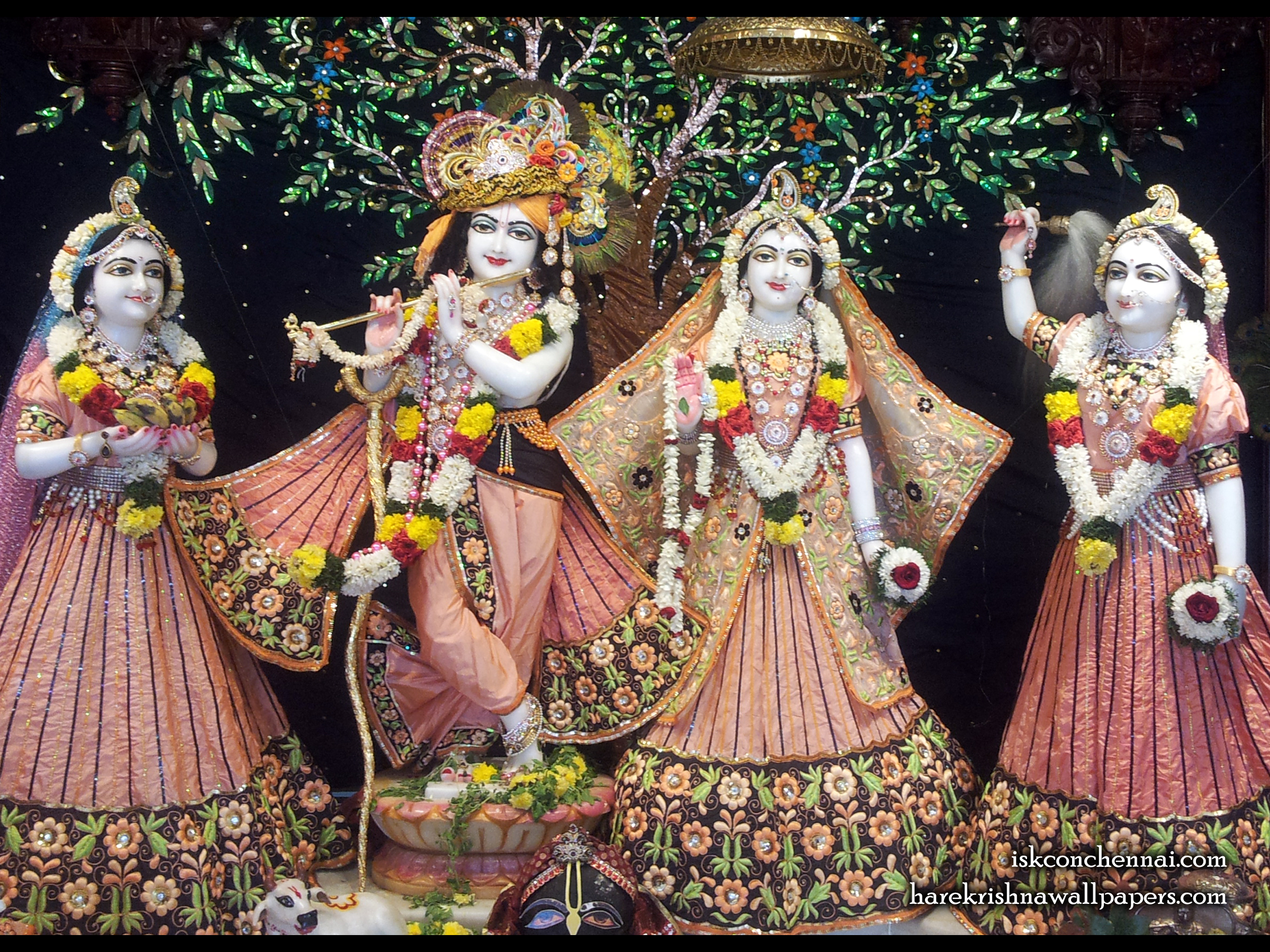 Sri Sri Radha Krishna Lalita Vishakha Wallpaper (004) Size 2400x1800 Download