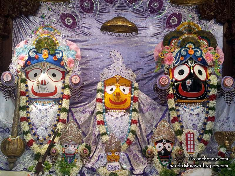 Jagannath Baldeva Subhadra Wallpaper (005)