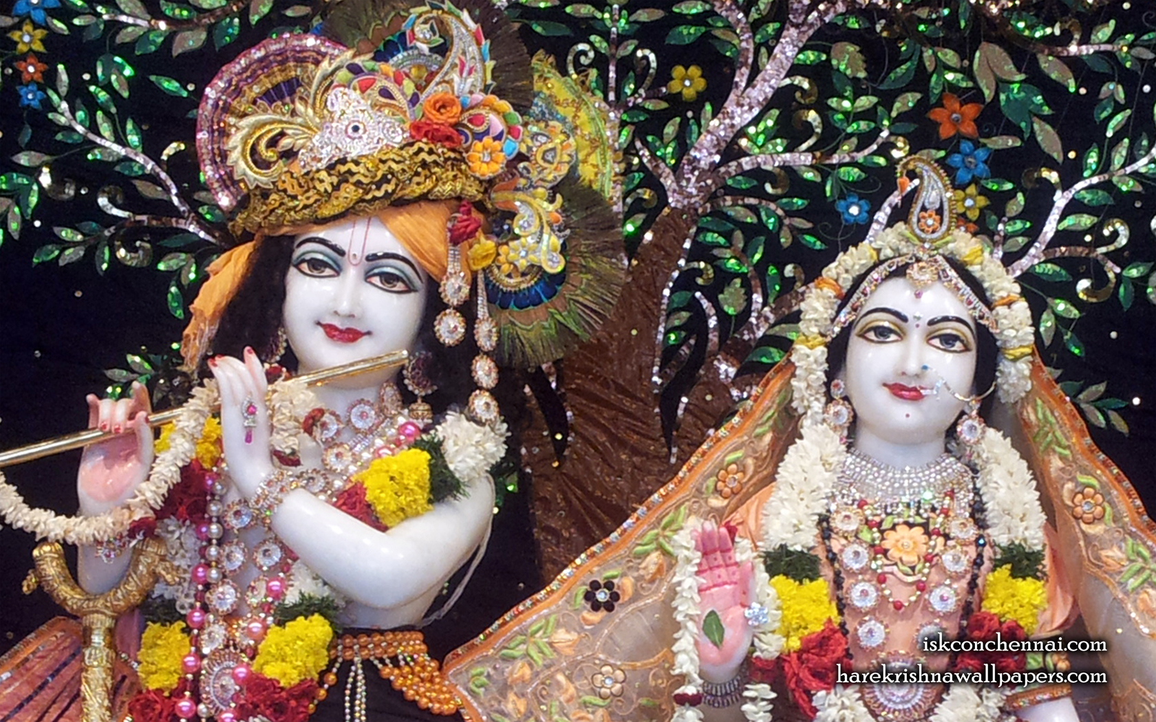 Sri Sri Radha Krishna Close up Wallpaper (005) Size 1680x1050 Download