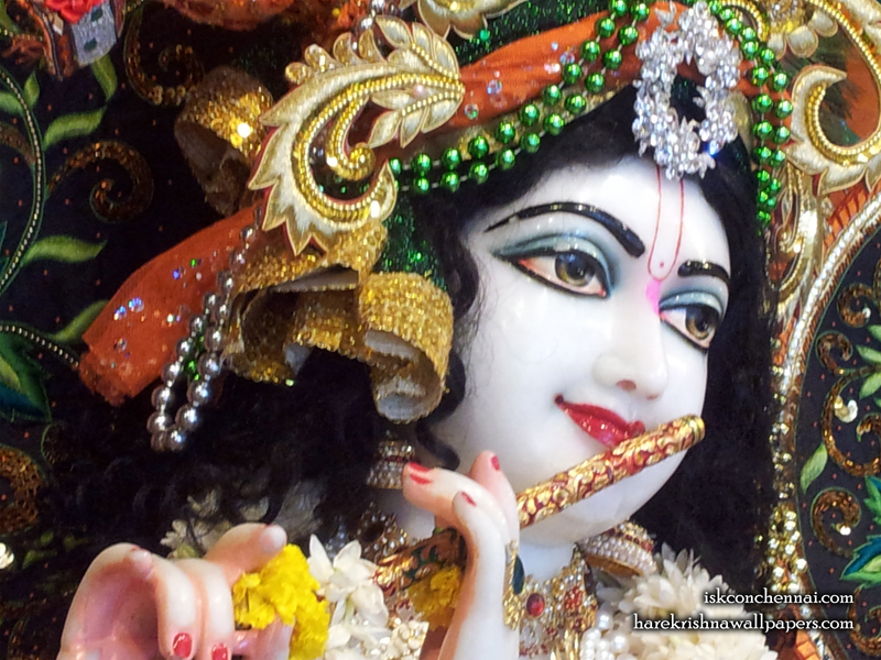 Sri Krishna Close up Wallpaper (006) Size 800x600 Download