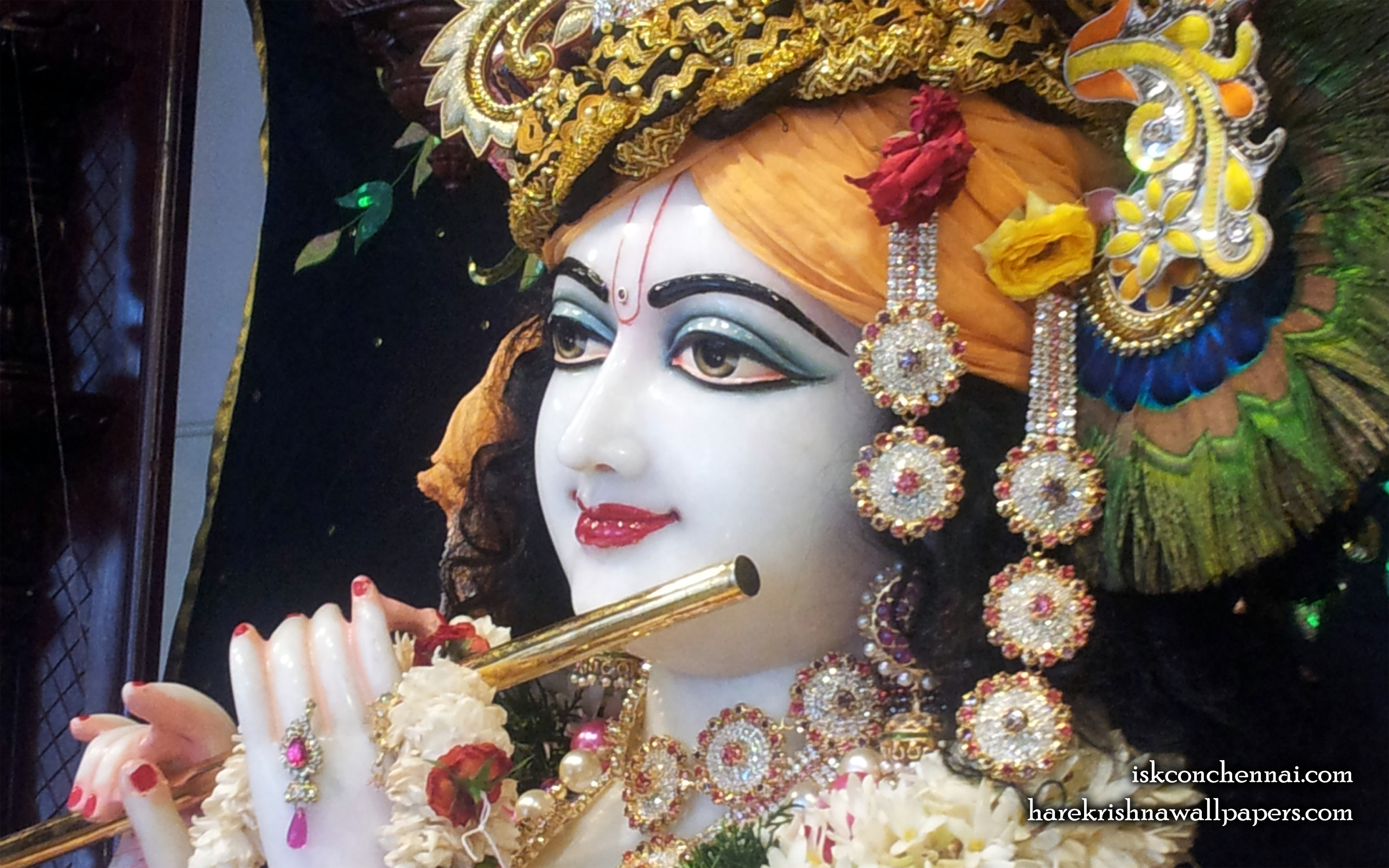 Sri Krishna Close up Wallpaper (008) Size 2560x1600 Download