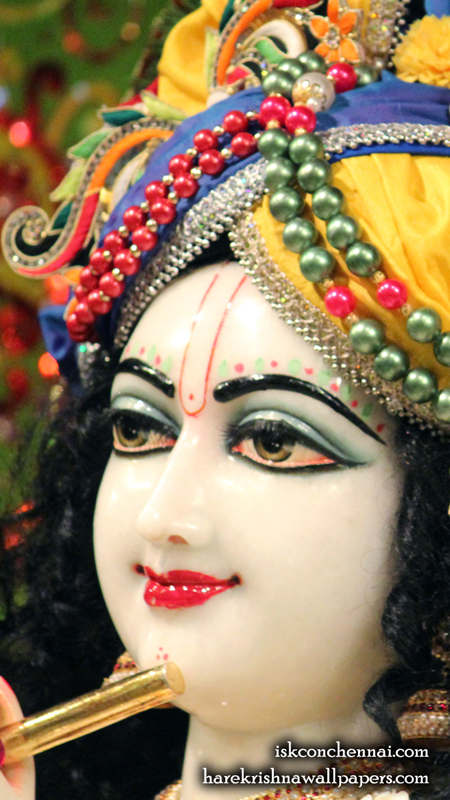 Sri Krishna Close up Wallpaper (011) Size 450x800 Download