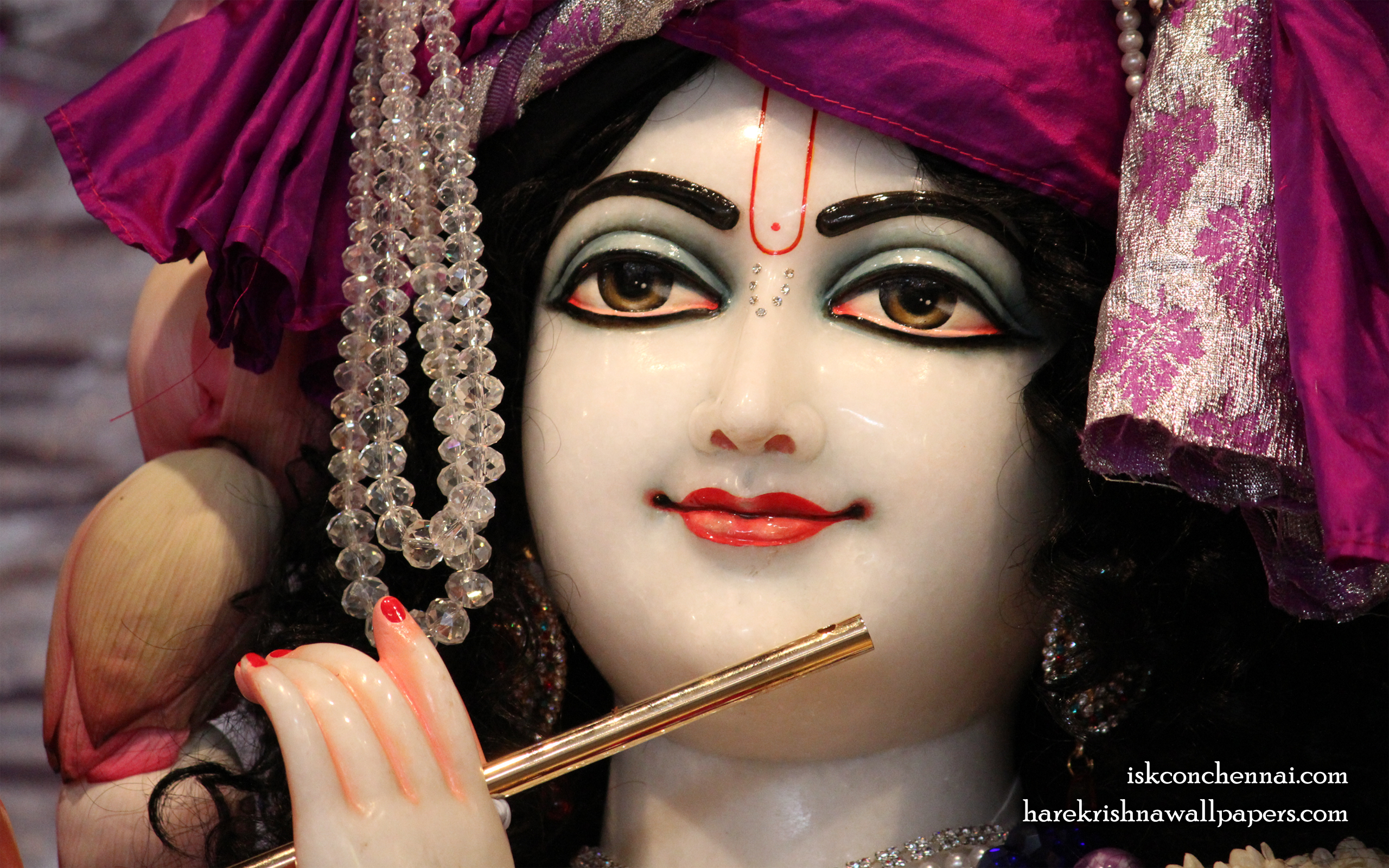 Sri Krishna Close up Wallpaper (013) Size 2560x1600 Download