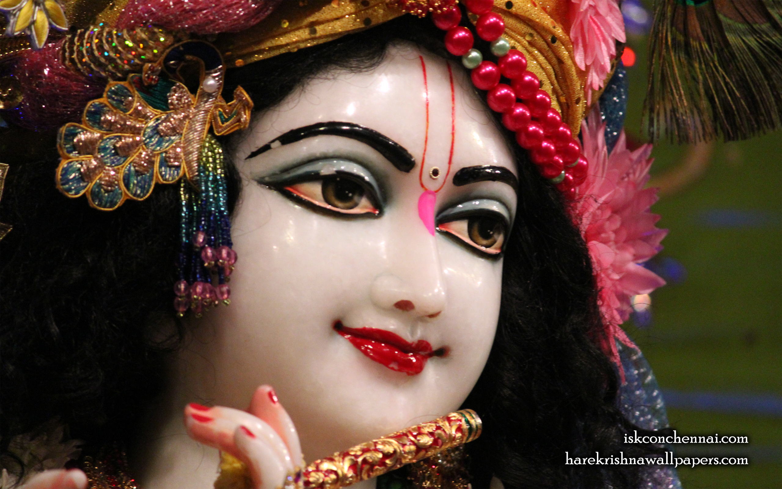Sri Krishna Close up Wallpaper (015) Size 2560x1600 Download