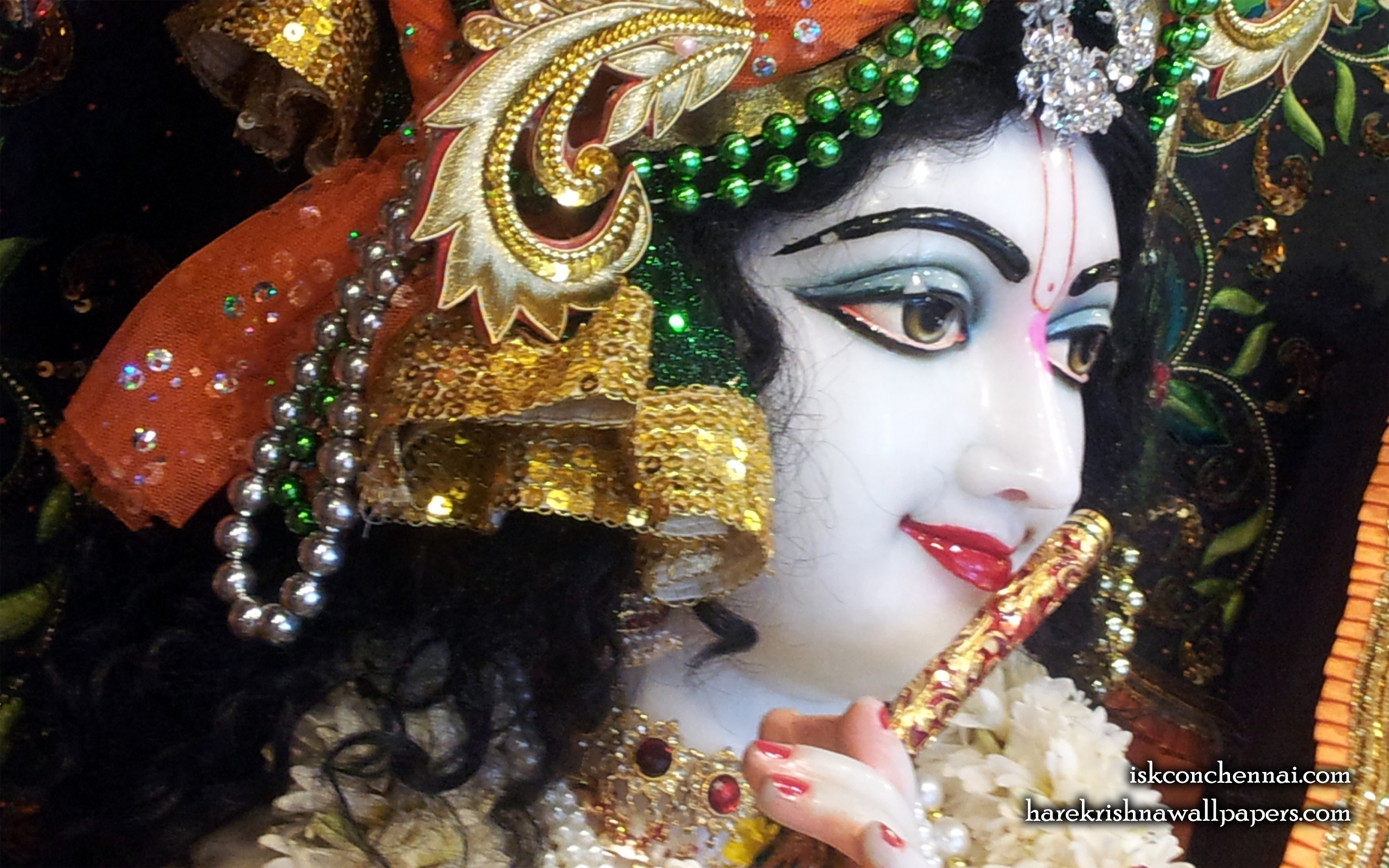 Sri Krishna Close up Wallpaper (020) Size 2560x1600 Download