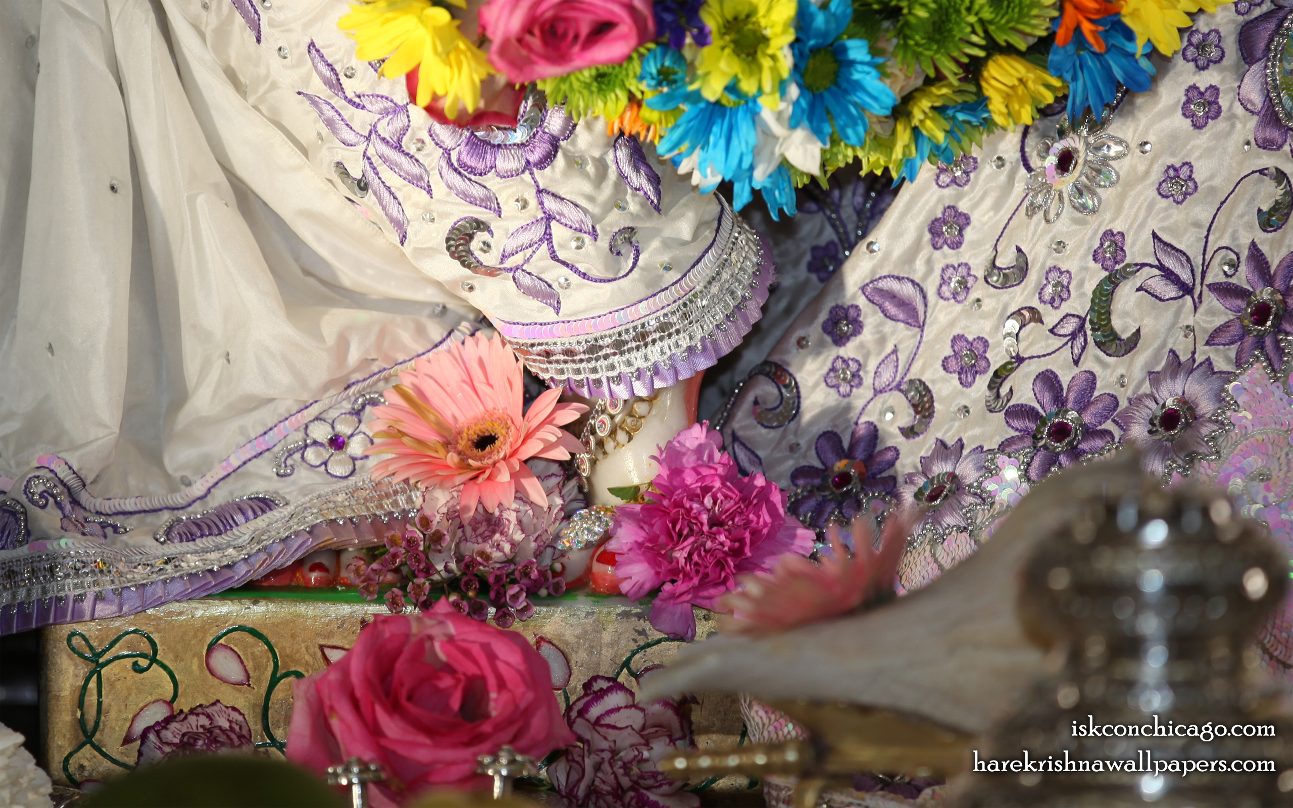 Sri Kishore Feet Wallpaper (001) Size 2560x1600 Download