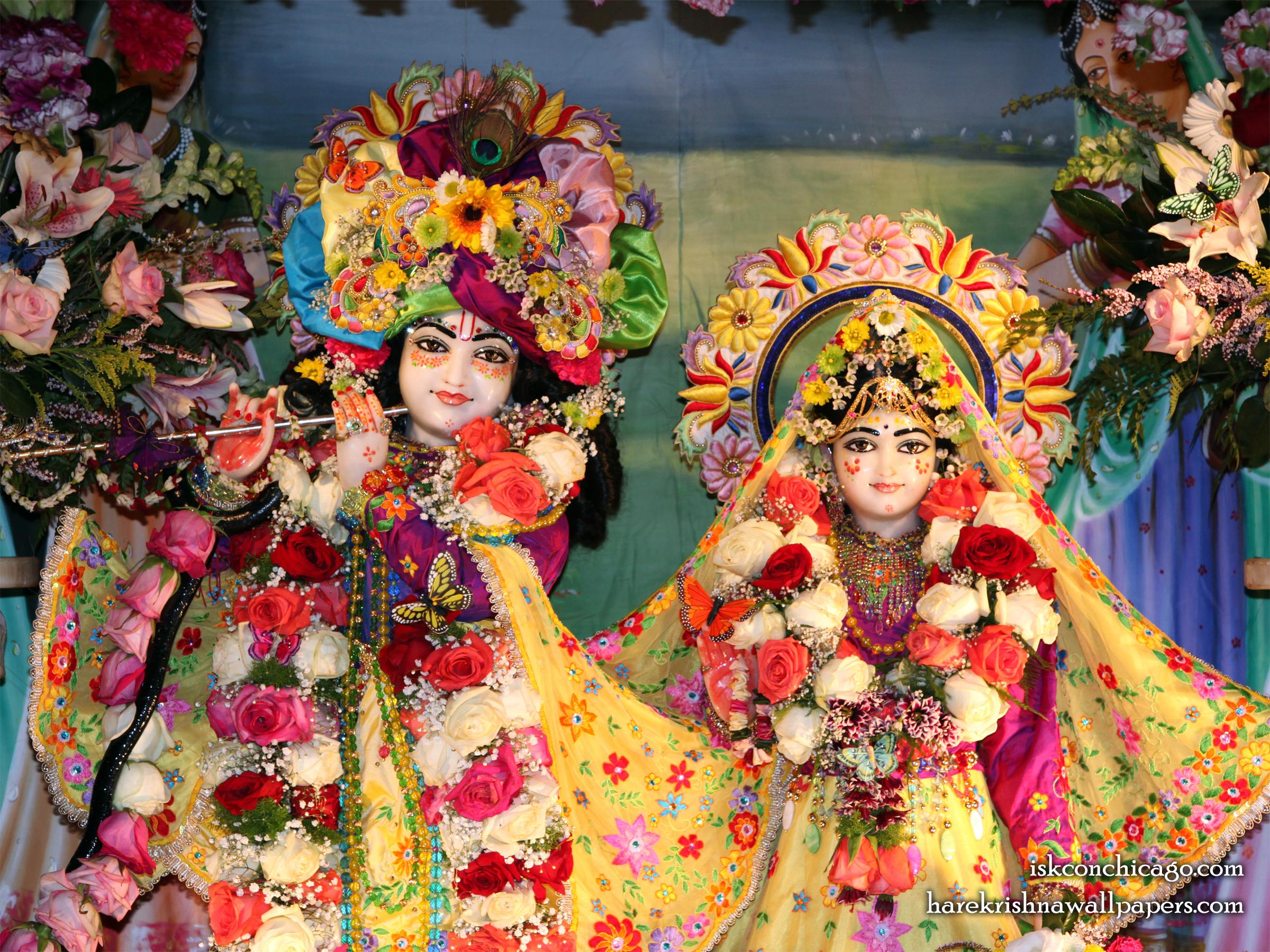 Sri Sri Kishore Kishori Close up Wallpaper (001) Size 2400x1800 Download