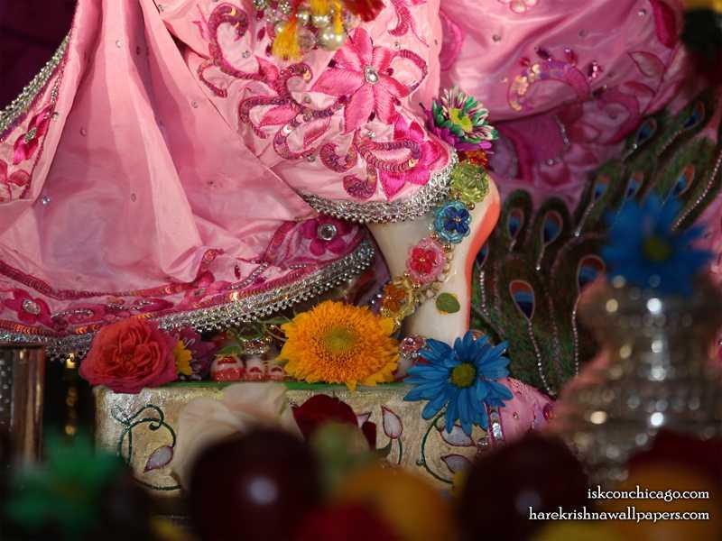 Sri Kishore Feet Wallpaper (002)