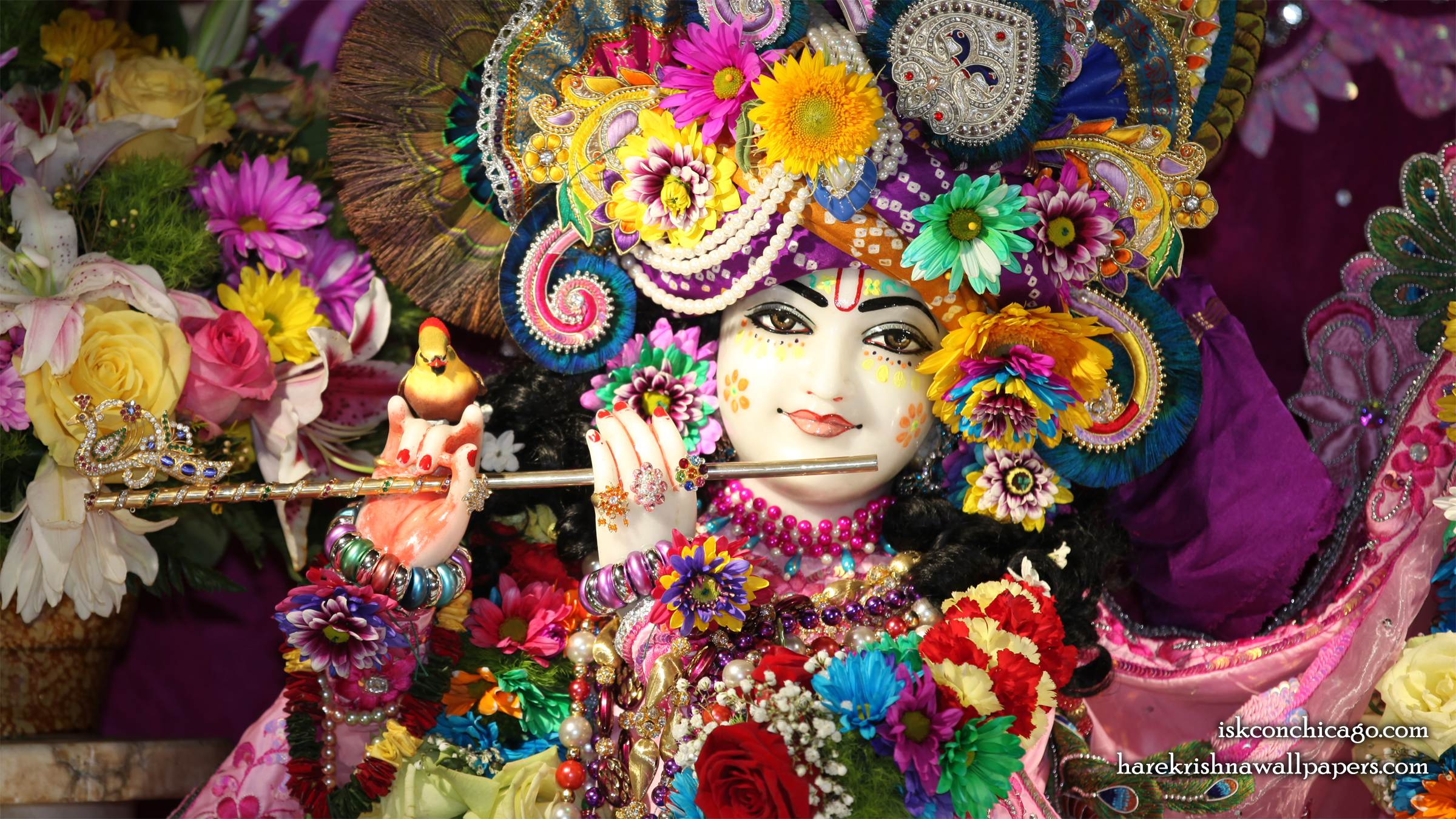 Sri Kishore Close up Wallpaper (003) Size 2400x1350 Download