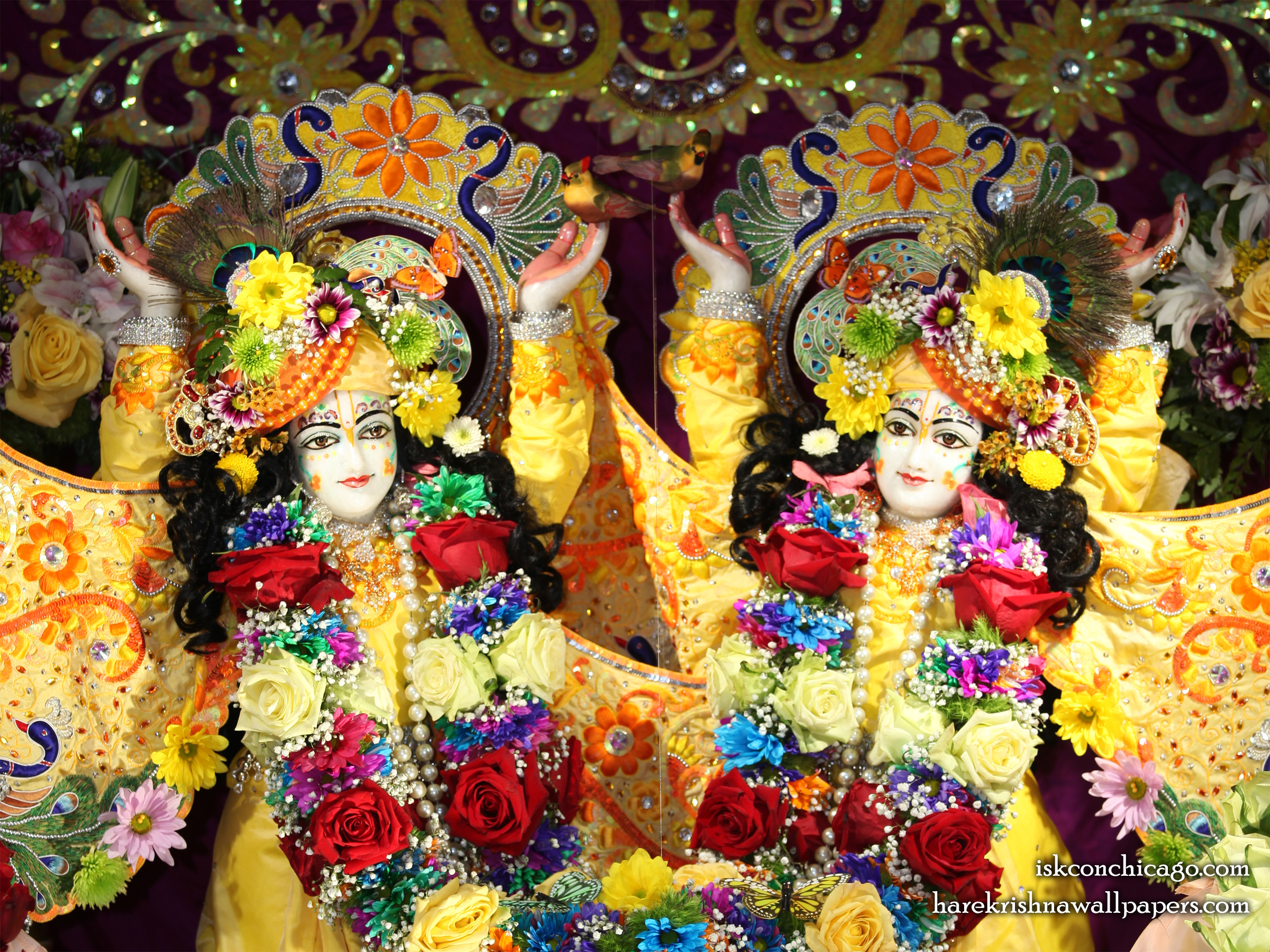 Sri Sri Gaura Nitai Close up Wallpaper (003) Size 2400x1800 Download