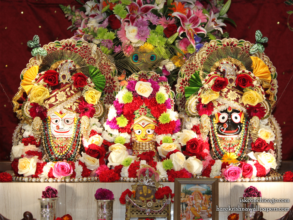 Jagannath Baladeva Subhadra Wallpaper (004) Size 1152x864 Download