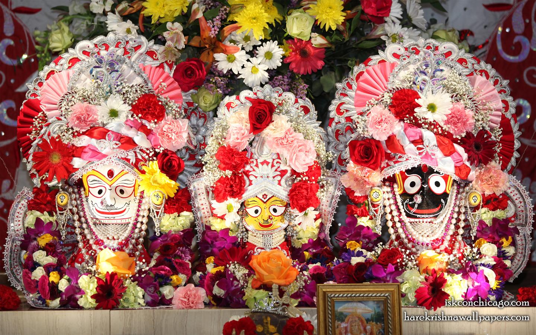Jagannath Baladeva Subhadra Wallpaper (006) Size 1440x900 Download
