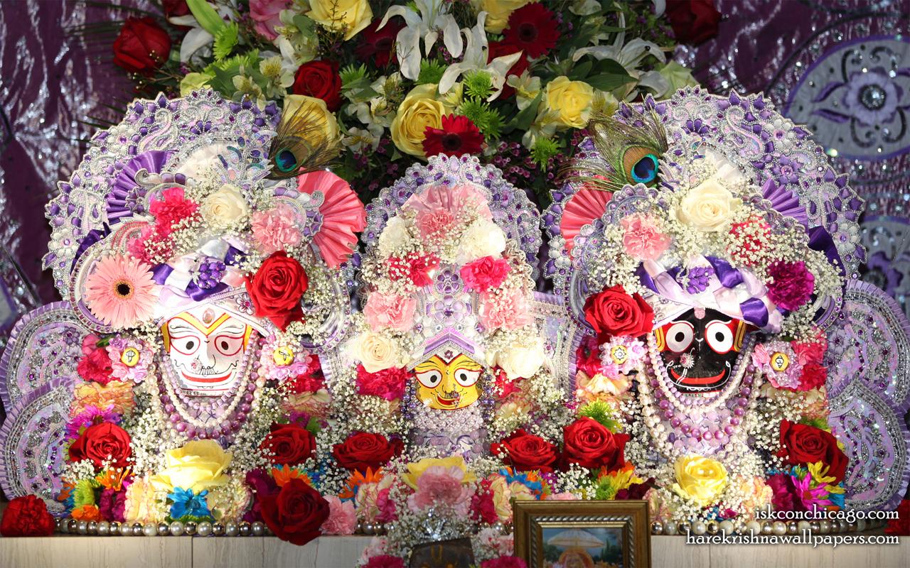 Jagannath Baladeva Subhadra Wallpaper (007) Size 1280x800 Download