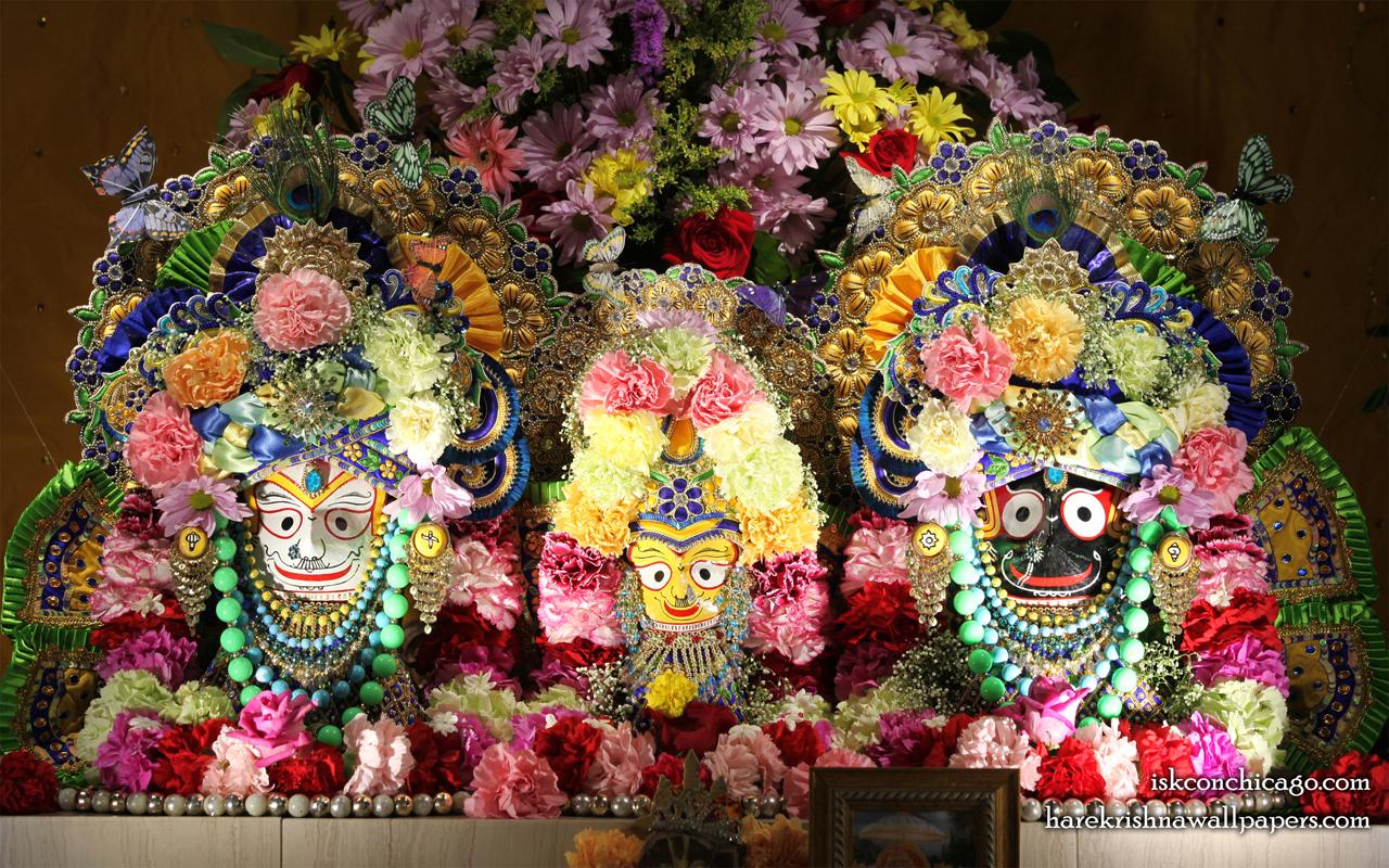 Jagannath Baladeva Subhadra Wallpaper (008) Size 1280x800 Download