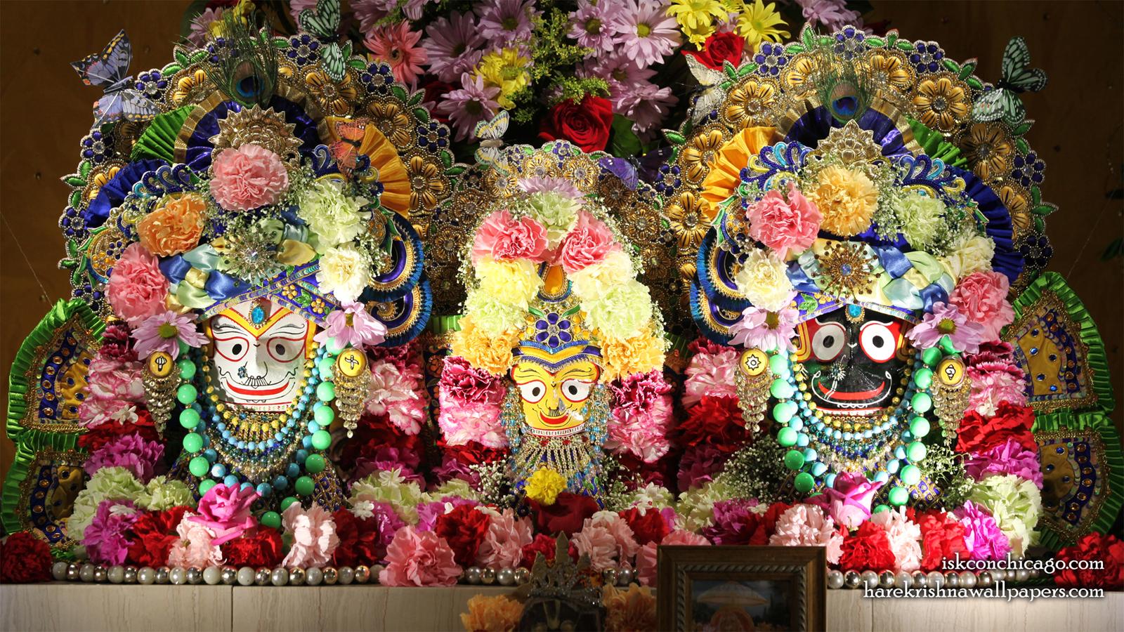 Jagannath Baladeva Subhadra Wallpaper (008) Size 1600x900 Download