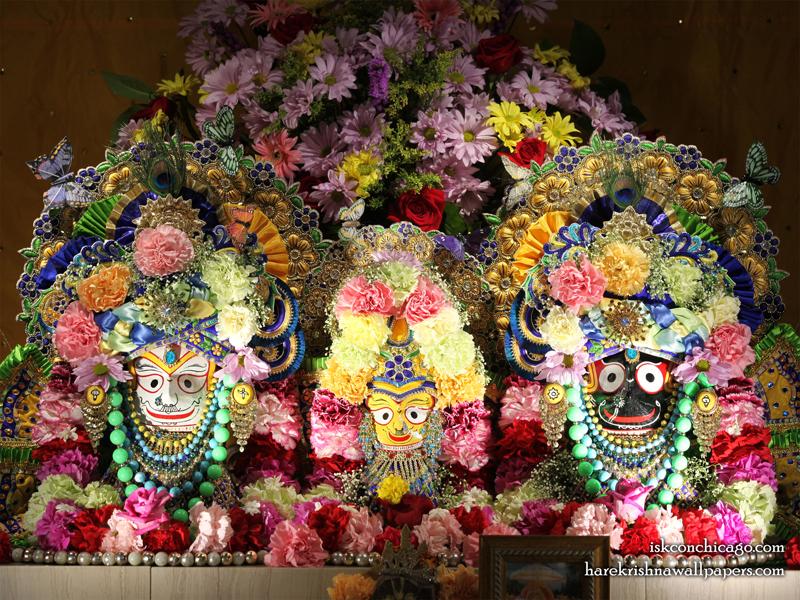 Jagannath Baladeva Subhadra Wallpaper (008) Size 800x600 Download