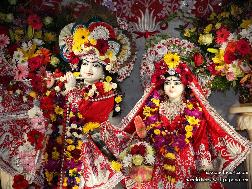 Sri Sri Kishore Kishori Close up Wallpaper (009) Size 1024x768 Download