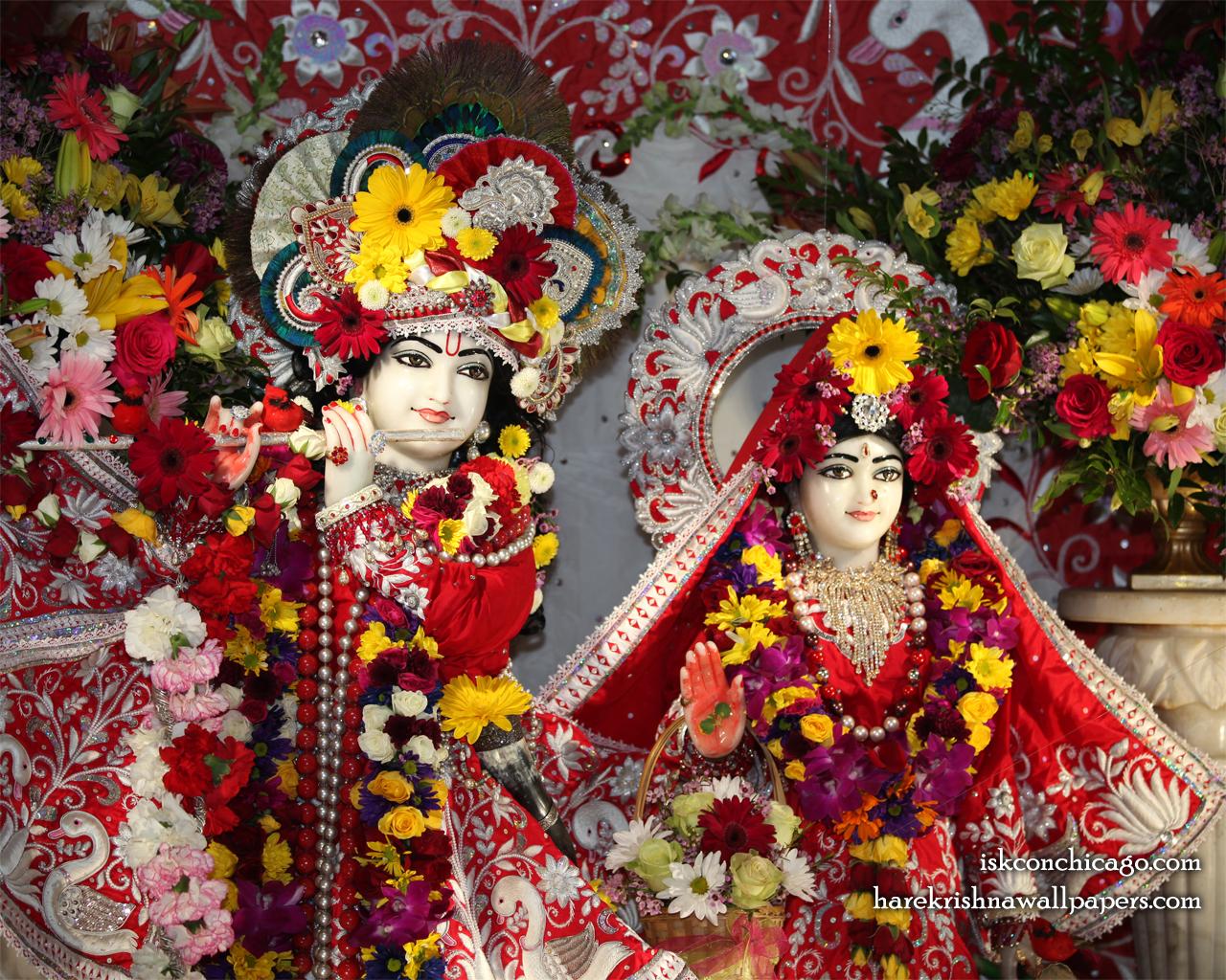Sri Sri Kishore Kishori Close up Wallpaper (013) Size 1280x1024 Download