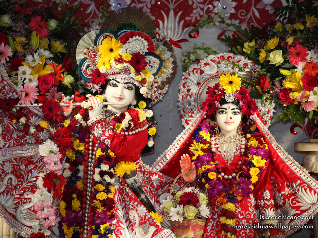 Sri Sri Kishore Kishori Close up Wallpaper (014) Size 1024x768 Download