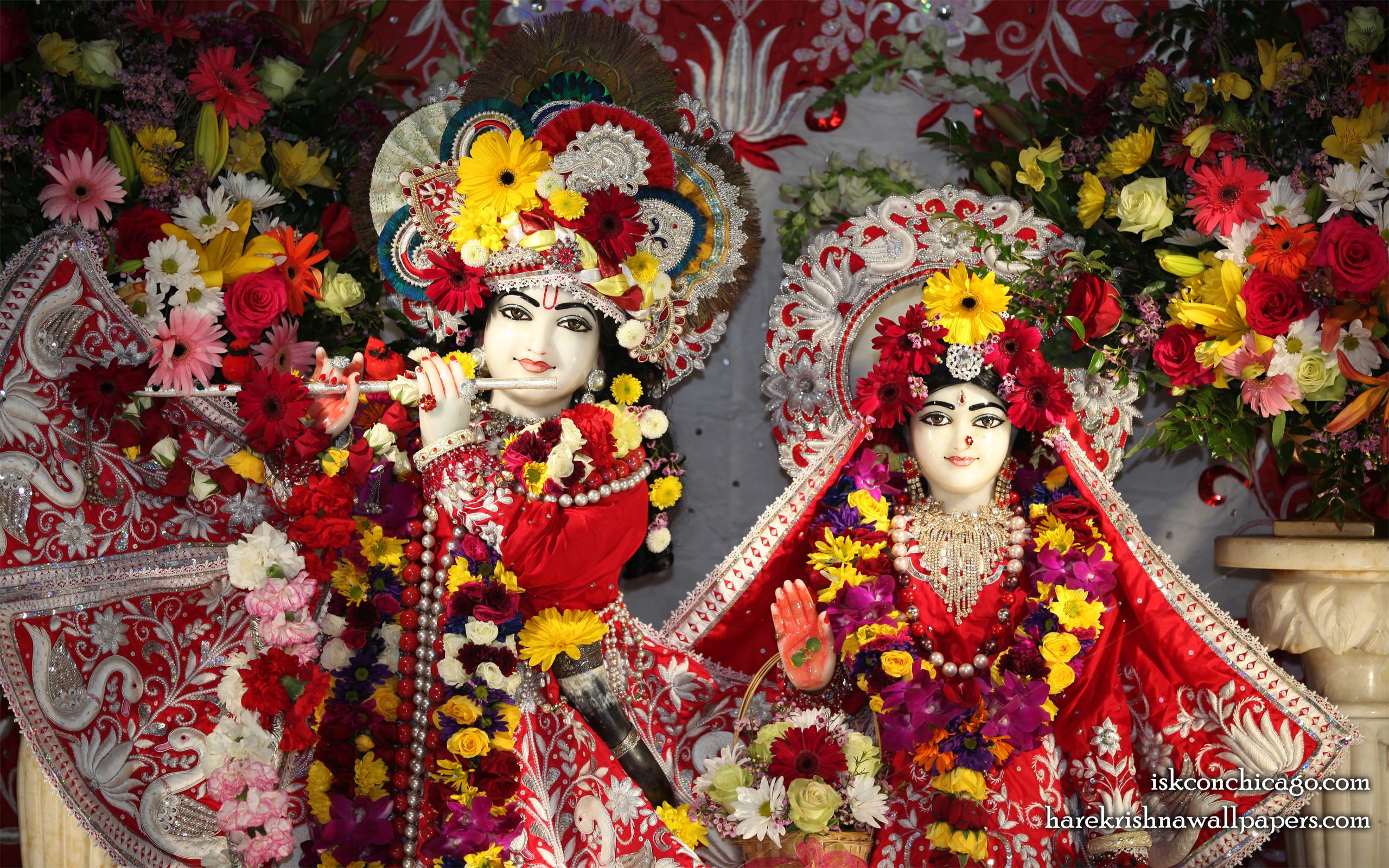 Sri Sri Kishore Kishori Close up Wallpaper (014) Size 2560x1600 Download
