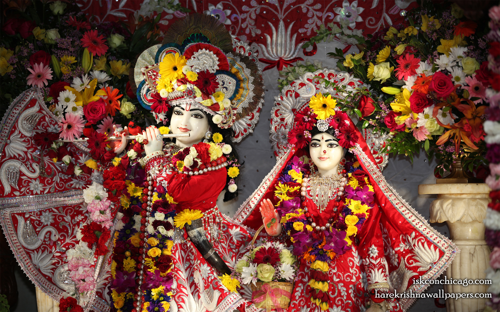 Sri Sri Kishore Kishori Close up Wallpaper (015) Size 1680x1050 Download
