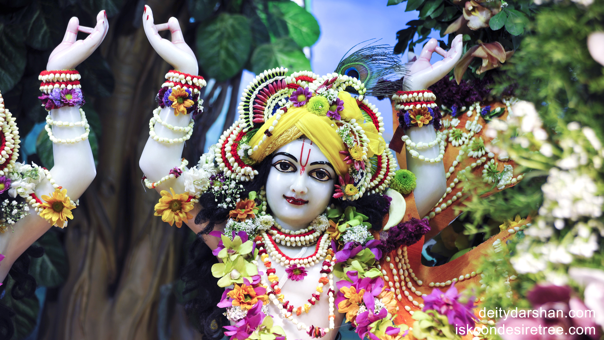 Sri Gaurachandra Close up Wallpaper (001) Size 1920x1080 Download