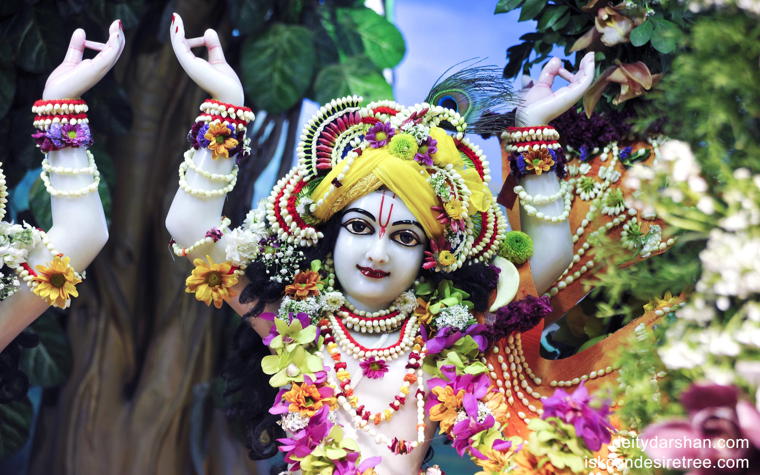Sri Gaurachandra Close up Wallpaper (001) Size 2560x1600 Download