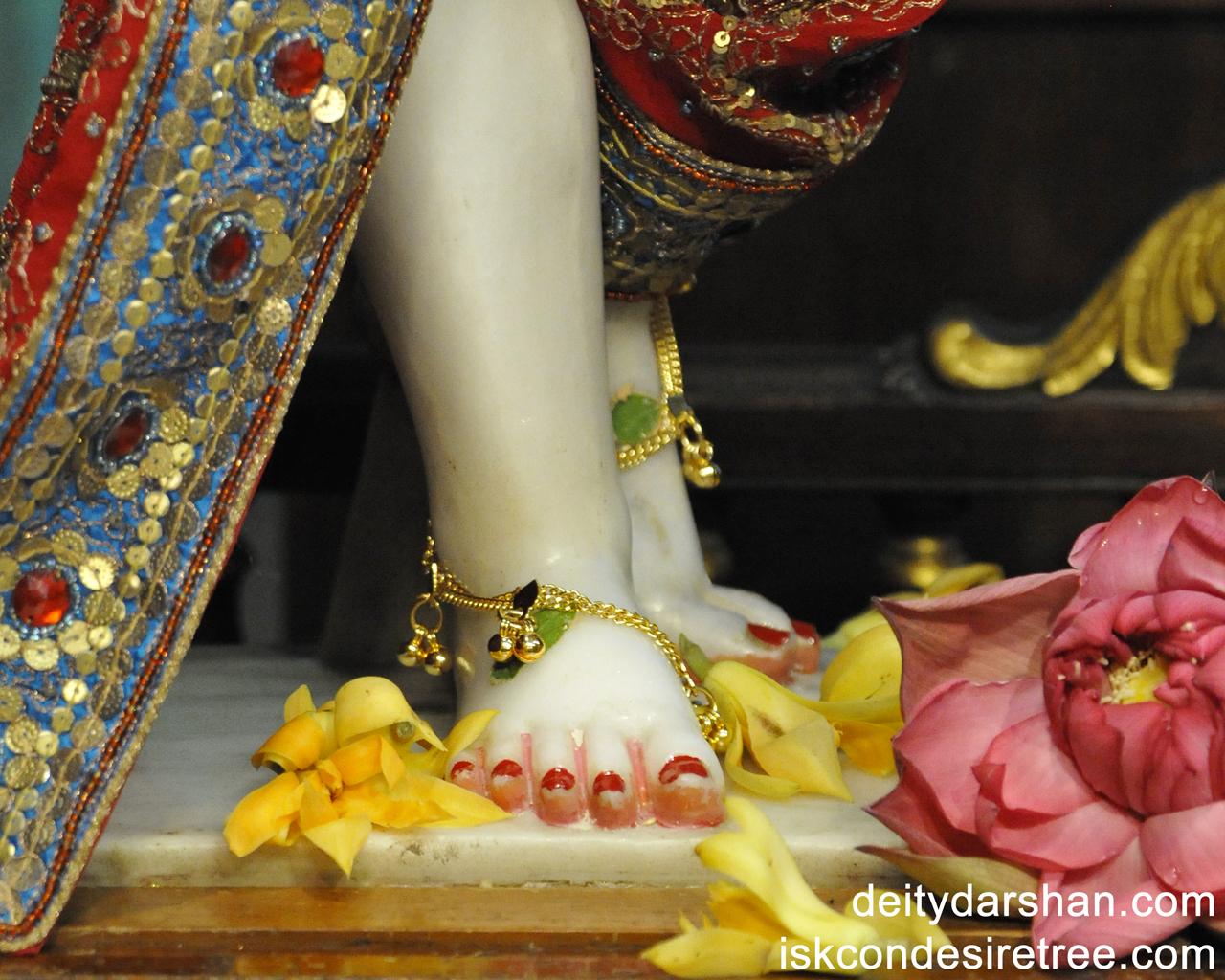 Sri Nitai Feet Wallpaper (001) Size 1280x1024 Download