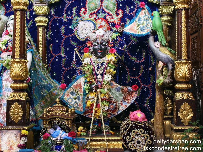Sri Gopal Wallpaper (002)
