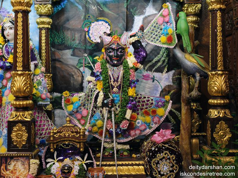 Sri Gopal Wallpaper (005)