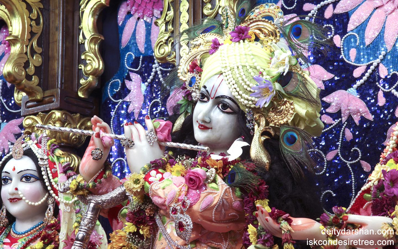 Sri Gopinath Close up Wallpaper (006) Size 1440x900 Download