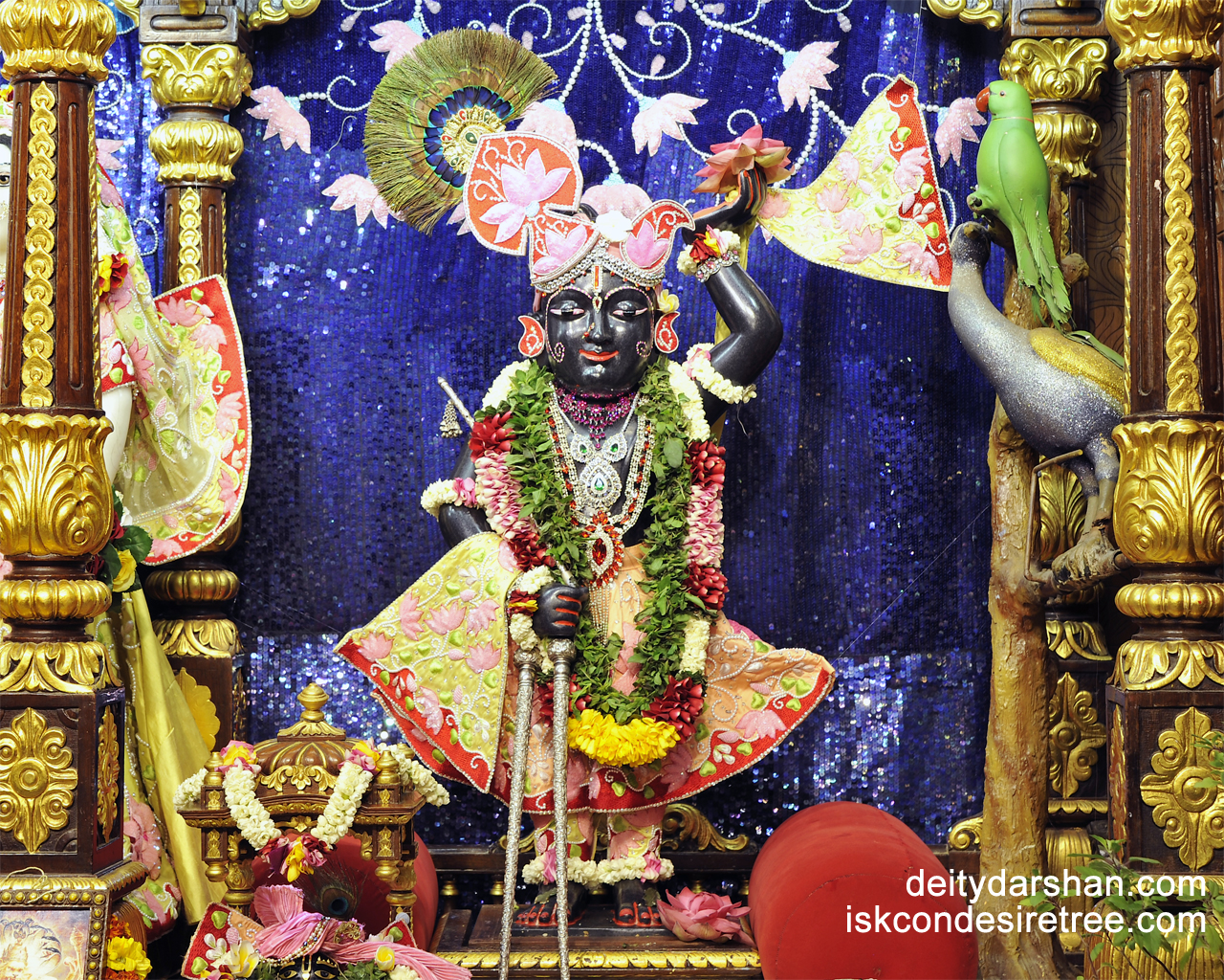 Sri Gopal Wallpaper (007) Size 1280x1024 Download