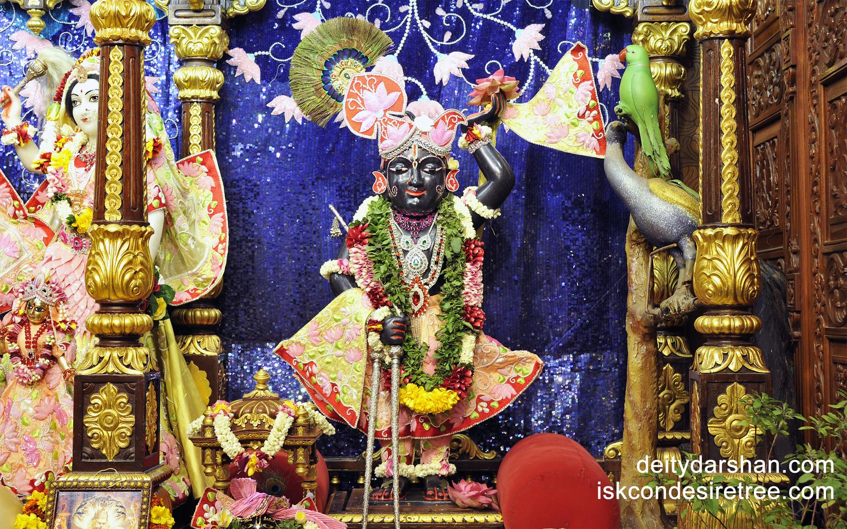 Sri Gopal Wallpaper (007) Size 1680x1050 Download
