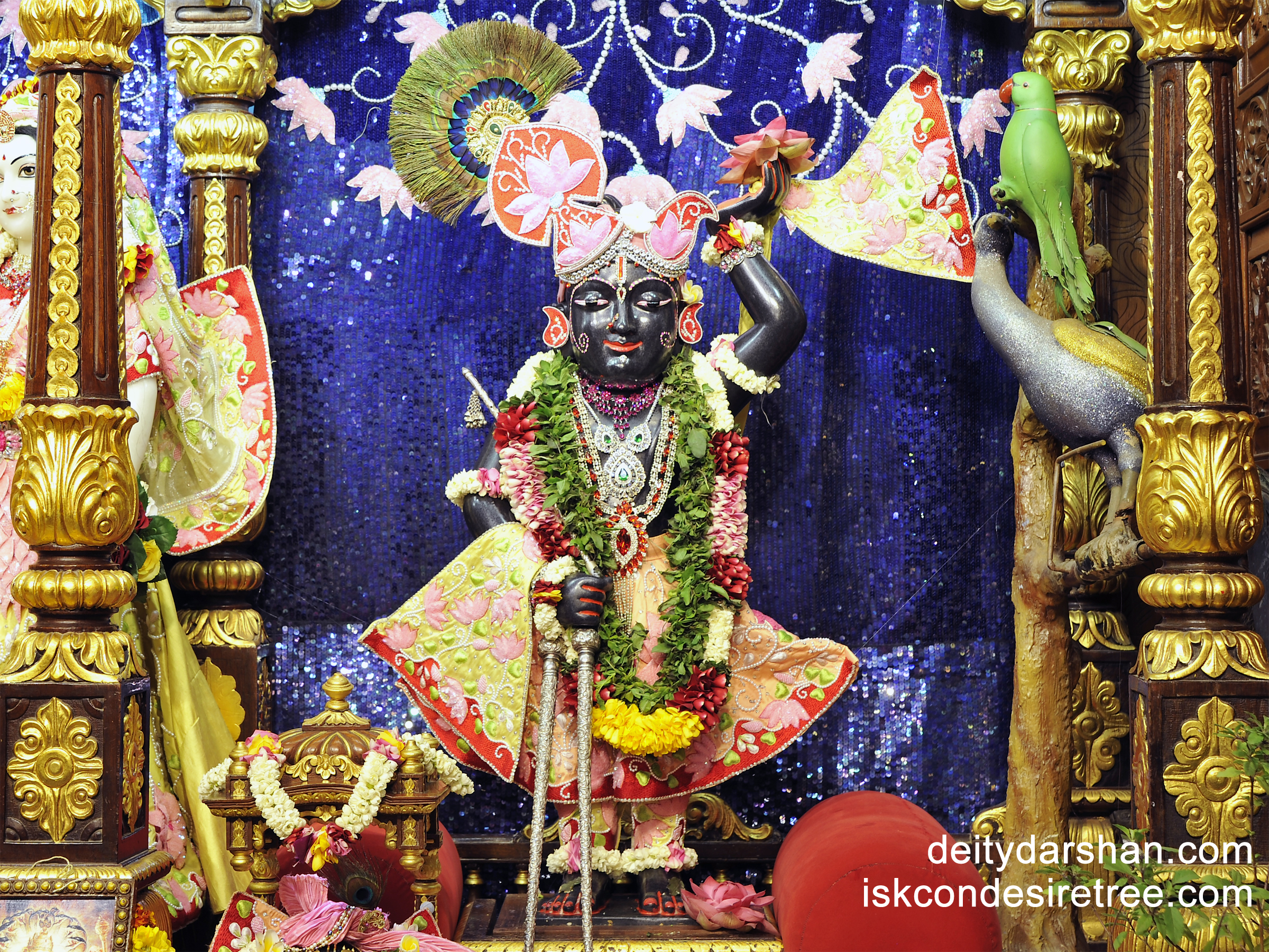 Sri Gopal Wallpaper (007) Size 2400x1800 Download