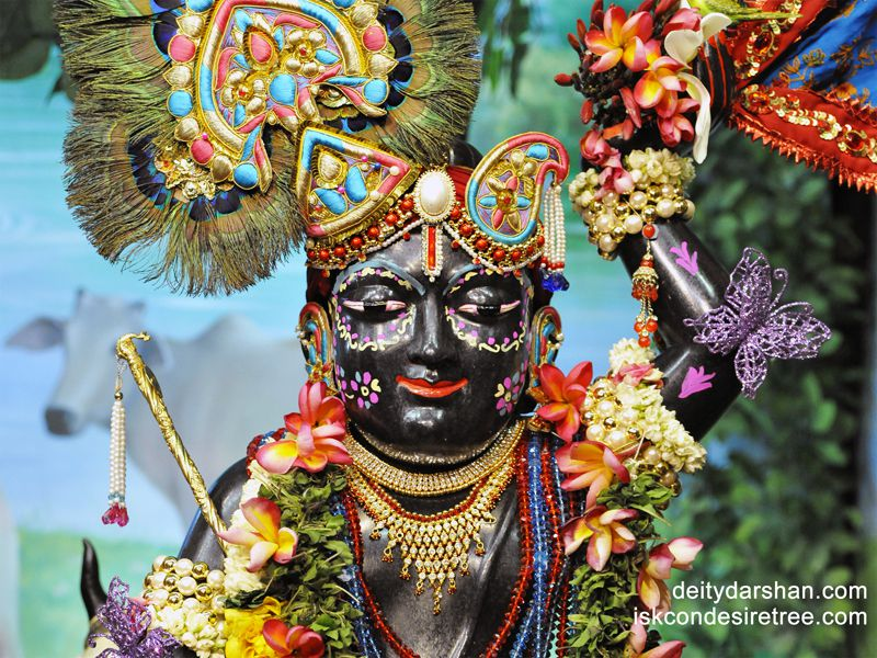 Sri Gopal Close up Wallpaper (008)