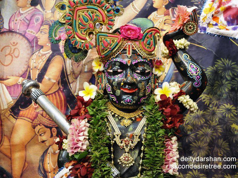 Sri Gopal Close up Wallpaper (010)