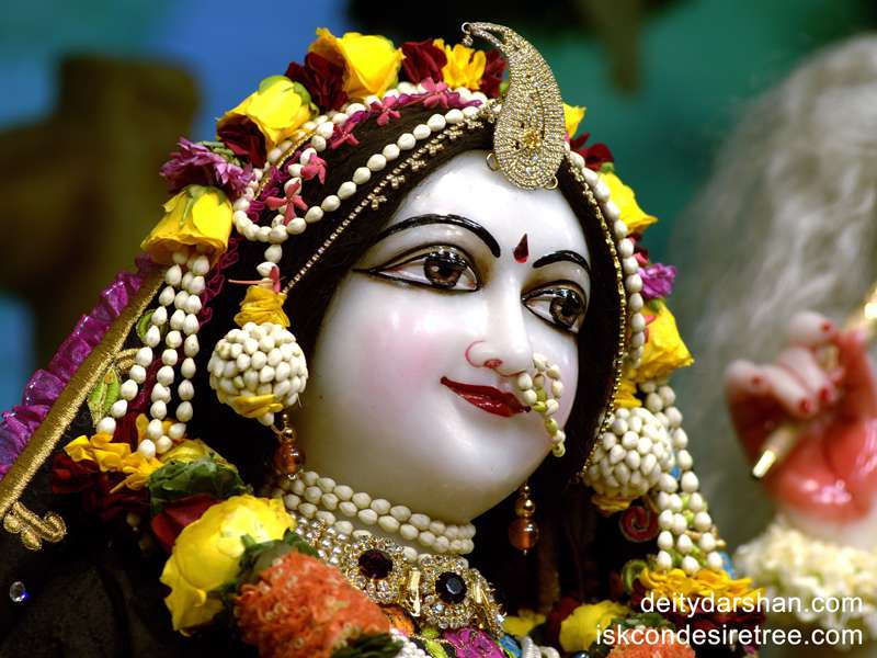 Srimati Radharani Close up Wallpaper (010)