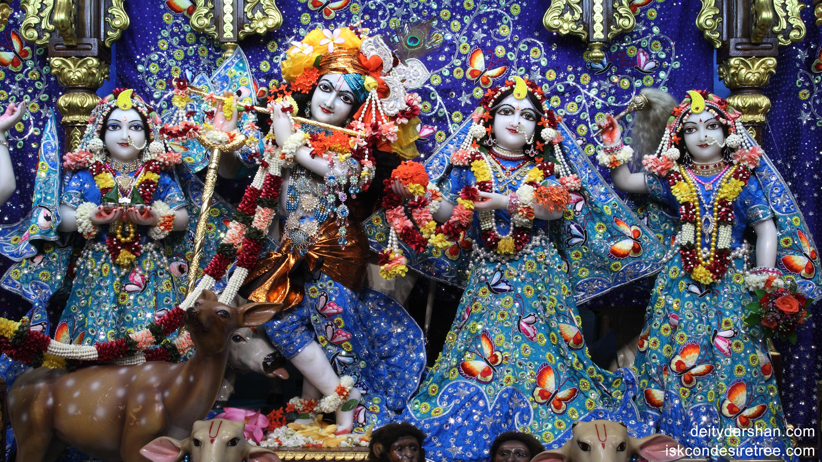 Sri Sri Radha Gopinath Lalita Vishakha Wallpaper (011) Size 1600x900 Download