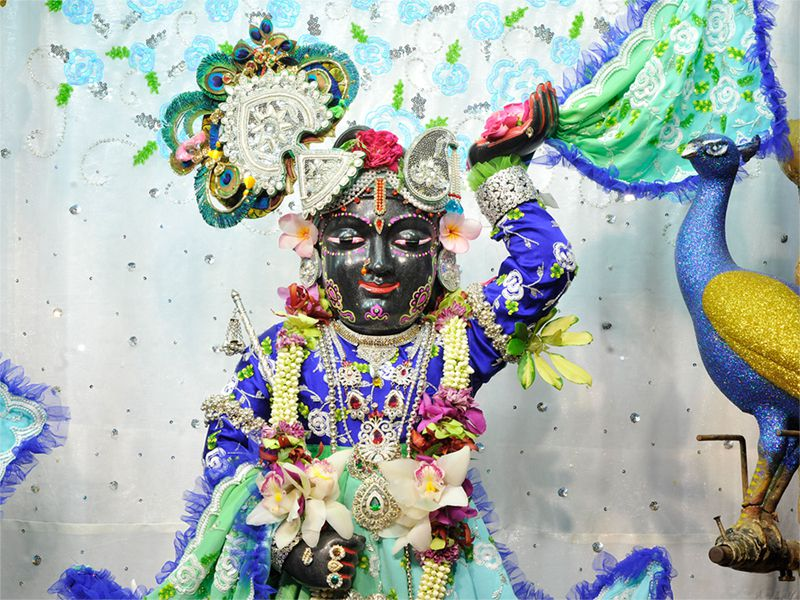 Sri Gopal Close up Wallpaper (016)