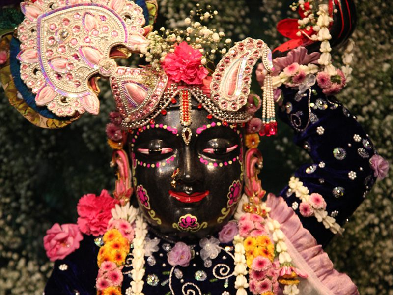 Sri Gopal Close up Wallpaper (017)