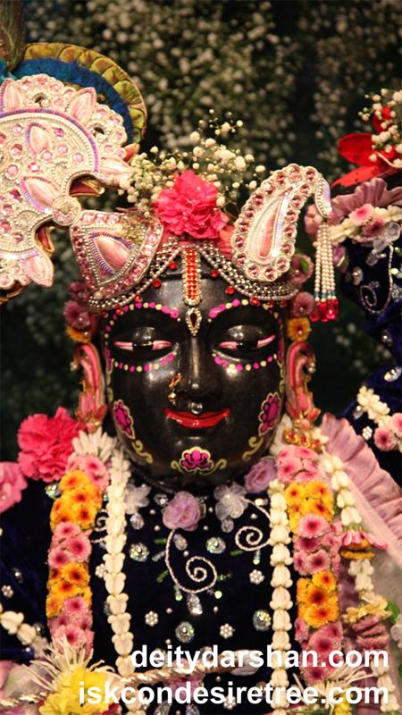 Sri Gopal Close up Wallpaper (017) Size 450x800 Download