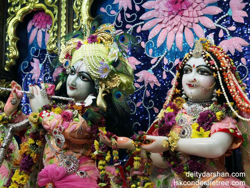 Sri Sri Radha Gopinath Close up Wallpaper (017)