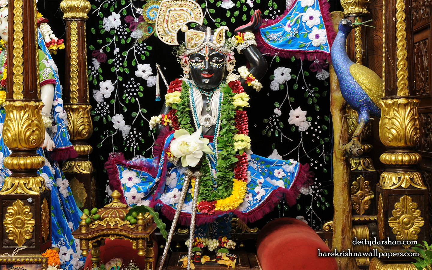 Sri Gopal Wallpaper (020) Size 1440x900 Download