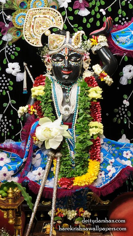 Sri Gopal Wallpaper (020) Size 450x800 Download