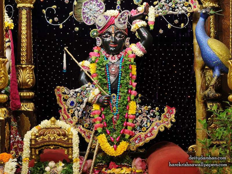 Sri Gopal Wallpaper (021)