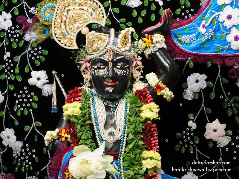 Sri Gopal Close up Wallpaper, Free Download Wallpapers, Hare Krishna Wallpapers.