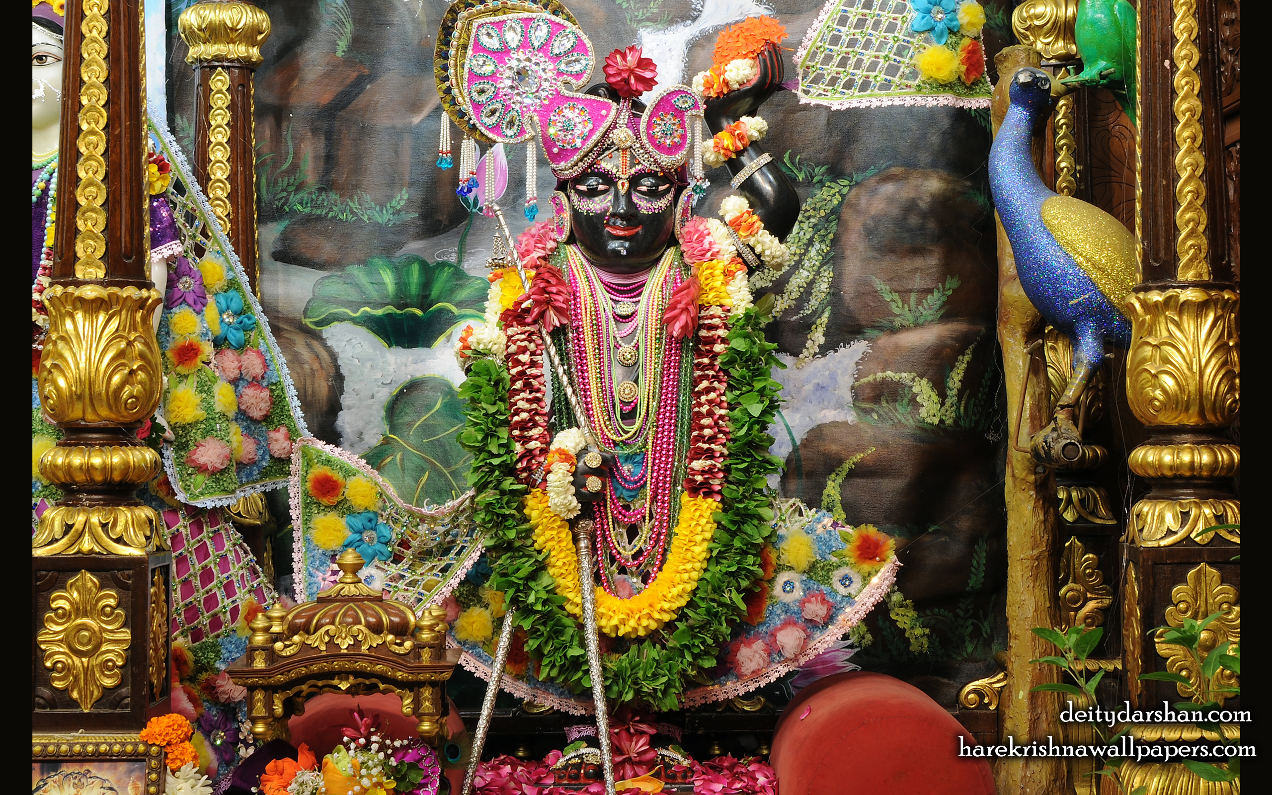 Sri Gopal Wallpaper (022) Size 2560x1600 Download